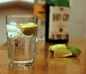 Gin_and_Tonic_with_ingredients – notfromUtrecht