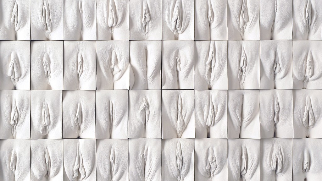 Jamie McCartney, 2008, The Great Wall of Vagina, Plaster.
