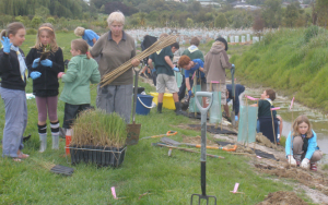 Restoration in Nelson, South Island: Mapua School in Tane's Ark planting project extending the covenanted Mapua wetland. (Photo: David Mitchell.)